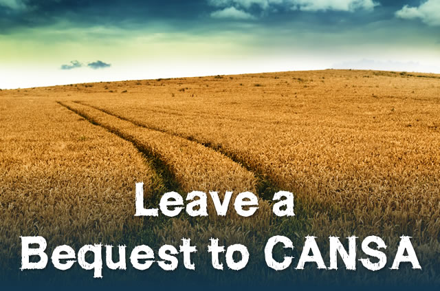 Leaving a Bequest to CANSA