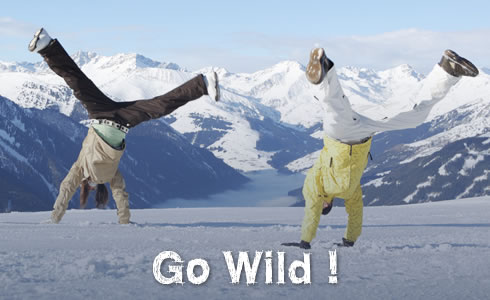 CANSA Active Online Fundraising Project: Go Wild